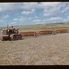 Harold Heath one-waying. Matador Co-op Farm. Co-op School day.  Matador.  07/11/1951