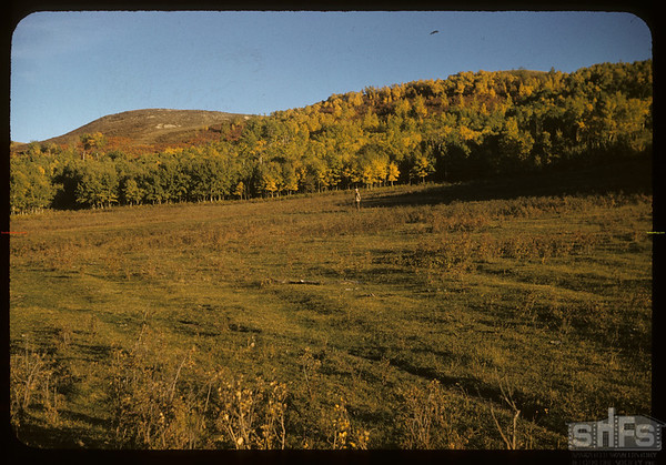 Dick DeCock standing in Legare's 1st grain field - 1/2 mile west of Mergal's. Wood Mountain. 09/25/1957