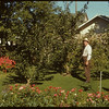 Bill Sharp in orchard..  Shaunavon.  08/20/1951