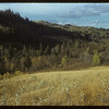 South Fork Valley - looking NW.  South Fork.  10/09/1954