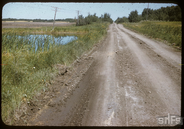 Surridge road north from Wawota.  Wawota.  08/09/1957