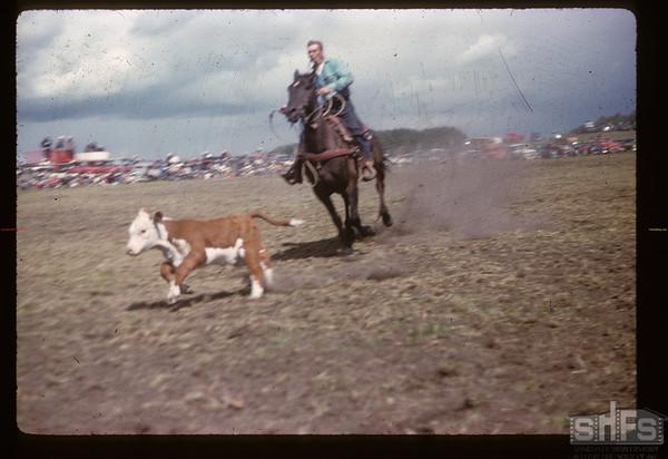 Murraydale rodeo - calf roping. Maple Creek. 07/08/1959
