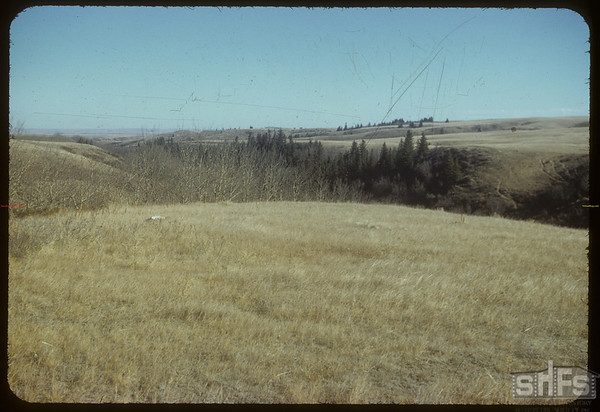 Across the Road N.E. of Shaunavon Lease.  South Fork.  10/22/1954