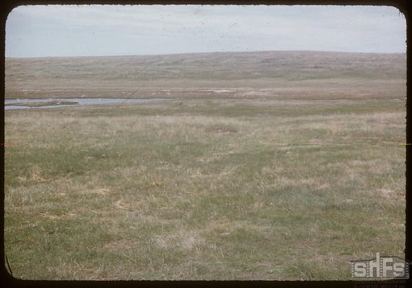 Early crossing of Rock Creek - 4 miles NW of Shaunavon..  Shaunavon.  05/31/1954