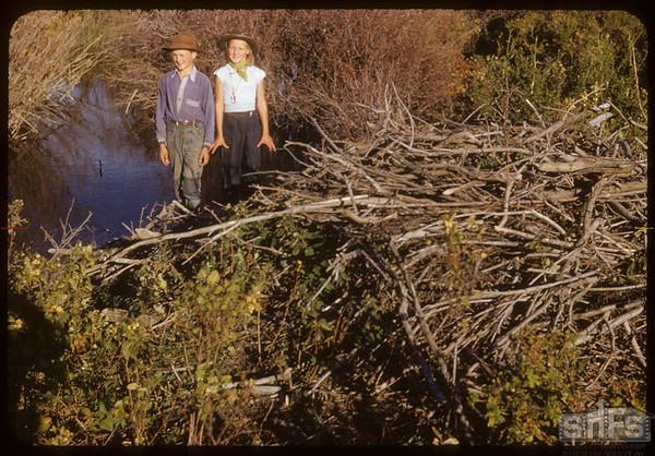 Beaver House. Jones Creek. Frank & Jean Dordeau.  South Fork.  09/28/1952