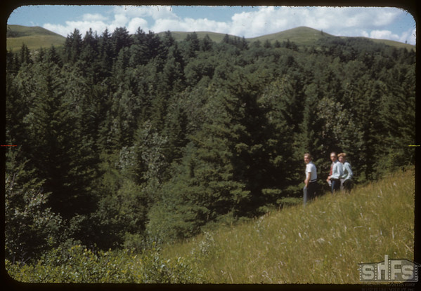 Co-op School Boys. South Fork Valley.  South Fork.  07/05/1953