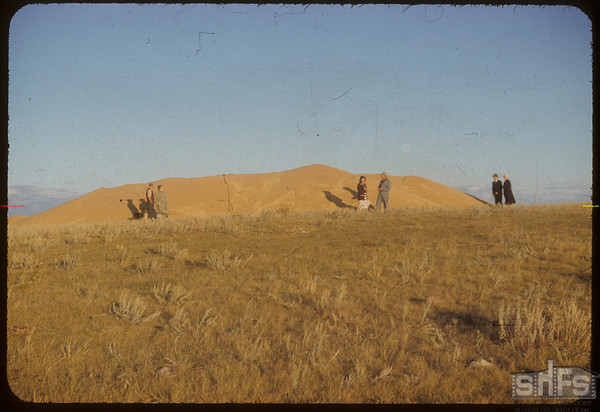 Roy & Art and Doug Force standing beside 14 thousand bushel pile of wheat.  Shaunavon.  09/20/1953