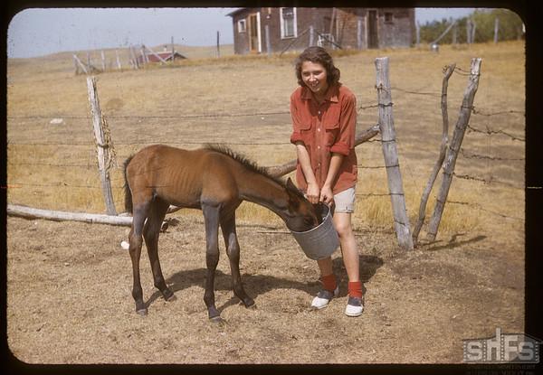 Gayle Cole & Colt.  South Fork.  08/20/1958