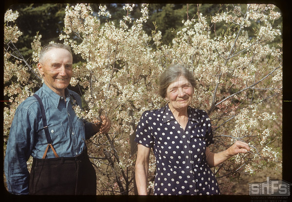 Mr & Mrs R. P. Robbins in the plum blossoms..  Shaunavon.  06/06/1954