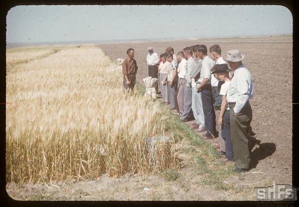 District 3 test plot supervisors.  Swift Current.  08/11/1957