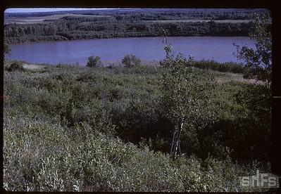 South Sask River from Gabriel's grave. Batoche. 06/28/1961