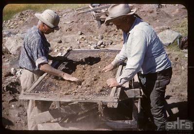 Screening for arrowheads on White Mud. Bracken. 07/17/1960