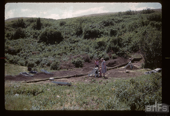 Archaeologist dig - looking SW- under supervision of Tom & Alice Kehoe. Gull Lake. 07/16/1960