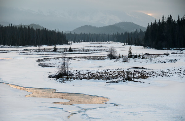 January 21, 2015  Let There Be Light  Athabasca River Jasper National Park, Alberta  * For the month of January I will, once again, be posting images from my annual trips to Jasper in January.