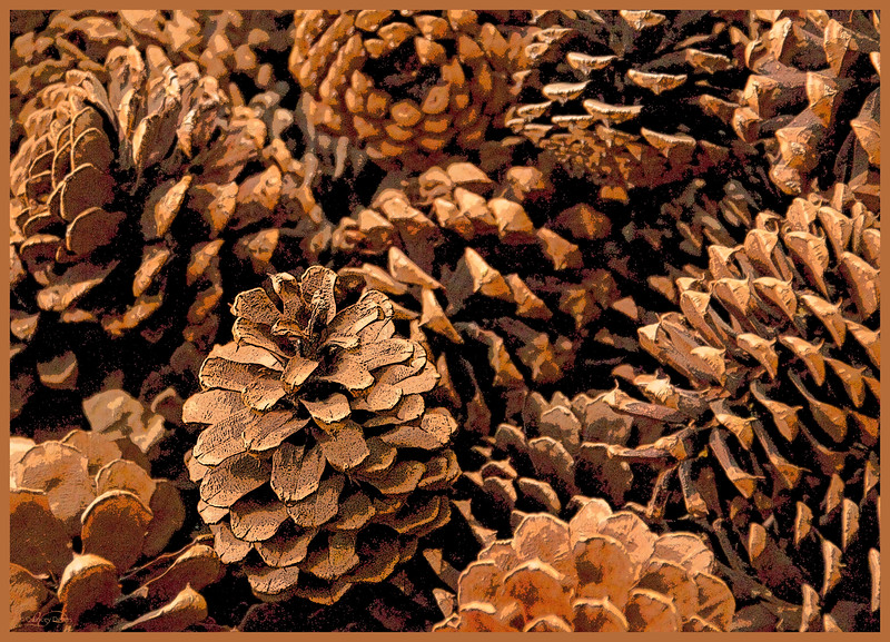 December 17, 2012<br /> <br /> Pine Cones<br />  <br /> I have challenged myself to post Christmas images for the next 12 days of Christmas. I hope to create a few Christmas cards for next year. I hope you enjoy the series and encourage all to join me :)