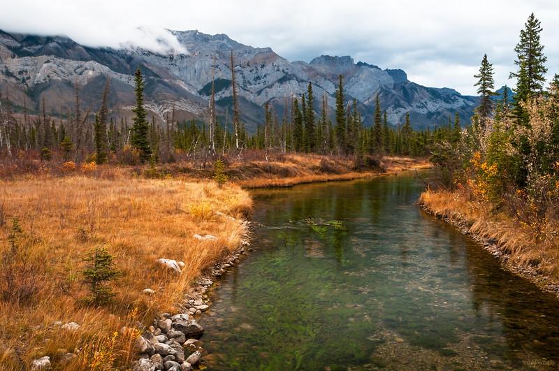 November 14, 2014<br /> <br /> Glorious Autumn <br /> <br /> Jasper National Park, Alberta