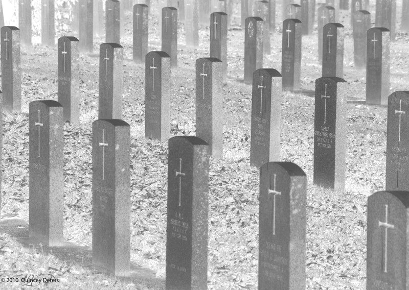 """Day Eleven<br /> <br /> """"Between the Crosses, Row on Row""""<br /> <br /> In Flanders fields the poppies blow<br />       Between the crosses, row on row,<br />    That mark our place; and in the sky<br />    The larks, still bravely singing, fly<br /> Scarce heard amid the guns below.<br /> <br /> We are the Dead. Short days ago<br /> We lived, felt dawn, saw sunset glow,<br />    Loved and were loved, and now we lie,<br />          In Flanders fields.<br /> <br /> Take up our quarrel with the foe:<br /> To you from failing hands we throw<br />    The torch; be yours to hold it high.<br />    If ye break faith with us who die<br /> We shall not sleep, though poppies grow<br />          In Flanders fields."""