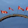"""July 28, 2011<br /> <br /> """"Summer Exhibition""""<br /> <br /> Capital Ex<br /> Edmonton, Alberta"""