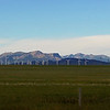 November 14, 2013<br /> <br /> Wind Power<br /> <br /> Near Pincher Creek, Alberta