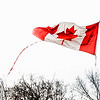 "February 20, 2015<br /> <br /> Fly the Flag<br /> <br /> #Flag50<br /> Fifty years ago the red-and-white Maple Leaf design became Canada's new national flag. As Canadians we are proud to fly the flag, adorn our clothes, backpacks and anything else we can find with the iconic maple leaf. Many people I know, including family members, have tattoos of the maple leaf. My brother even dressed up as the Canadian flag one year for Halloween. <br /> <br /> #photochallenge2015<br /> I am taking part in a weekly challenge this year and the theme this week is WIND. I wanted to shoot the flag for it's 50th anniversary and it was super windy yesterday so I captured this image for the week. <br />  <a href=""http://www.PhotoChallenge.org"">http://www.PhotoChallenge.org</a>"