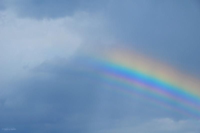 """February 23, 2011<br /> <br /> """"Rainbow Bright""""<br /> <br /> Elk Island Retreat<br /> Near Fort Saskatchewan, Alberta"""