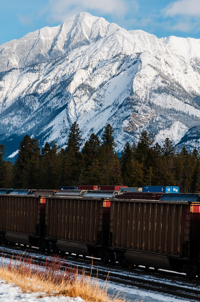 January 27, 2015<br /> <br /> Train Through Town<br /> <br /> Jasper Town Site<br /> Jasper National Park, Alberta<br /> <br /> J in J 2015 - Trains travel through the Jasper town site all day long. Passenger trains come through regularly, but most of them are freight trains. The sound of the trains pulling in and out is just another reason I love Jasper!<br /> <br /> * For the month of January I will, once again, be posting images from my annual trips to Jasper in January.