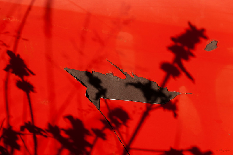 February 11, 2015<br /> <br /> Shadows & Rust<br /> <br /> Aldon Auto Salvage<br /> Lamont, Alberta
