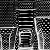 """September 13, 2014<br /> <br /> Spots & Stripes<br /> <br /> * I am considering entering this into our monthly camera club competition with the theme """"Opposites"""". What do you think?"""