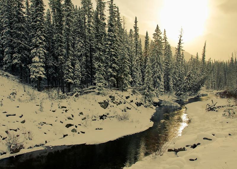 February 2, 2013<br /> <br /> Shimmering Shunda<br /> <br /> Shunda Creek<br /> Near Nordegg, Alberta