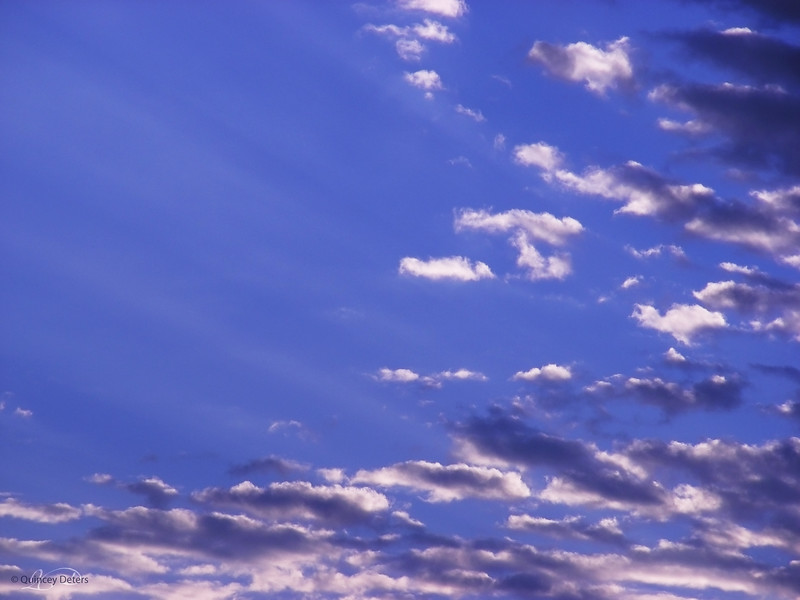 """March 1, 2011<br /> <br /> """"The Sky's the Limit""""<br /> <br /> Alberta"""