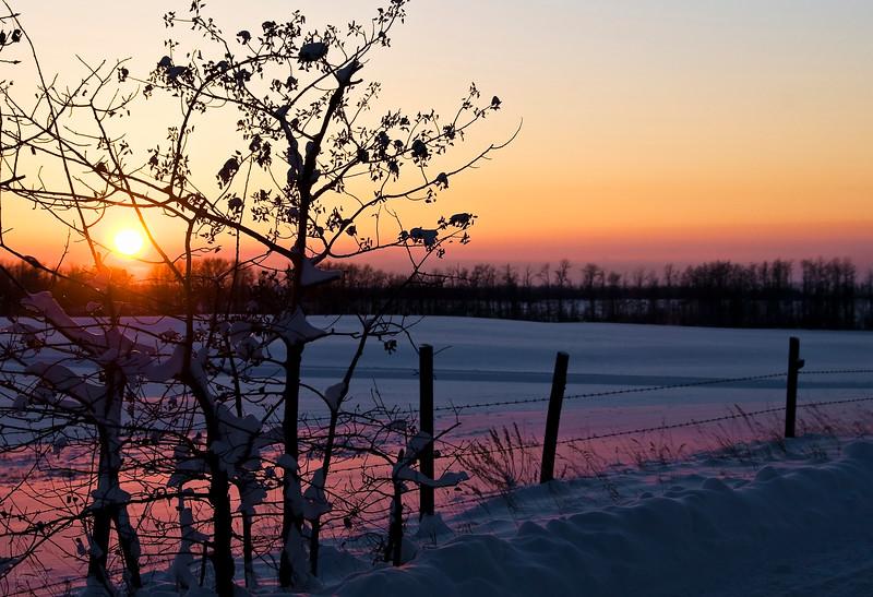 December 7, 2012<br /> <br /> Sunset on the Prairies<br /> <br /> Elk Island Retreat<br /> Near Fort Saskatchewan, Alberta