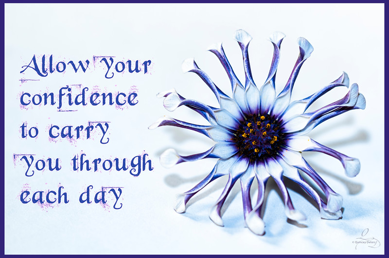 Allow Your Confidence...