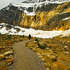 March 3, 2013<br /> <br /> Path of the Glacier Trail<br /> <br /> Mount Edith Cavell<br /> Jasper National Park, Alberta<br /> <br /> * I took this during our summer vacation in June, 2011. This was our first trip to Mount Edith Cavell, which is a major tourist attraction in Jasper National Park. We went early in the morning and caught a very brief sunrise, then it clouded over and began snowing. Since then, this location has sustained much damage from weather and flooding. The Cavell Road is usually open from mid-June through October but I do not think it is will be accessible this year.