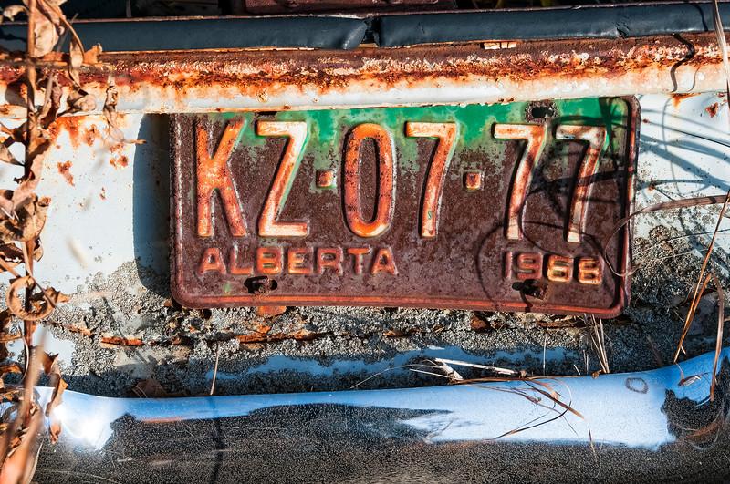 Alberta License Plate