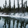 January 11, 2015<br /> <br /> Frosty Moving In<br /> <br /> Jasper National Park, Alberta<br /> <br /> * For the month of January I will, once again, be posting images from my annual trips to Jasper in January.