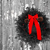 December 16, 2012<br />  <br /> Christmas Wreath<br /> <br />  I have challenged myself to post Christmas images for the next 12 days of Christmas. I hope to create a few Christmas cards for next year. I hope you enjoy the series and encourage all to join me :)<br /> <br />  * While we were in Jasper we borrowed a Christmas wreath from the bed & breakfast we stay at, took it out into the aspen forest and created some great images.