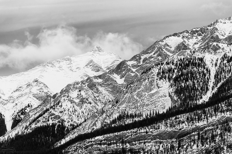 Mountains in Monochrome