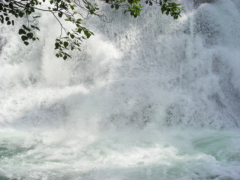 """March 10, 2012<br /> <br /> Waterfall Water Wall<br /> <br /> Clayton Falls<br /> Bella Coola, Brtish Columbia<br /> <br /> ~ I have a few contests that I want to enter in the near future, one of which is """"Waterfalls"""" so that has been my focus lately.<br /> <br /> * For the month of March, I will be processing images that I have saved in various folders.This will allow me to share some images I have been wanting to get to for some time. Knowing camping season is just around the corner, I have a lot of work to do! I hope you enjoy them :)"""