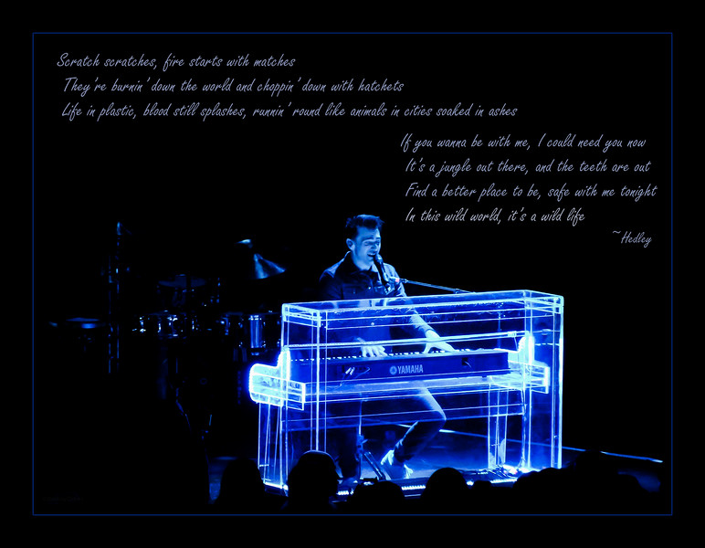 December 12, 2014<br /> <br /> Wild Life<br /> <br /> * Jacob Hoggard from Hedley - Wild Live Tour - April 2014<br /> Rexall Place, Edmonton, Alberta