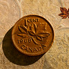 February 4, 2013<br /> <br /> Penny<br /> 1858 - 2013<br /> <br /> * Today the The Royal Canadian Mint stopped distributing pennies. This is my tribute to the penny. I have jars and jars full of them, guess it is time to roll them up and cash them in.<br /> <br /> PS - Those of you wondering what Rhymes with Orange from yesterday, it is door hinge  :)   LOL