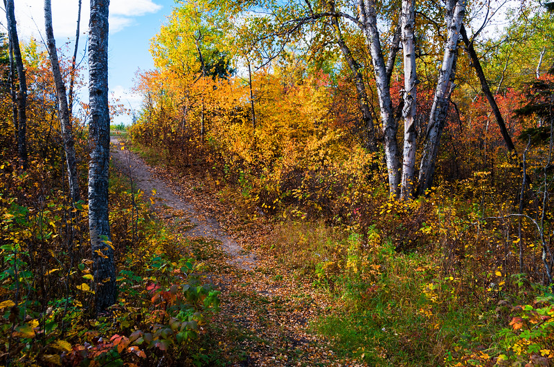 September 22, 2014<br /> <br /> Last day of Summer<br /> First day of Fall<br /> <br /> Elk Island Retreat<br /> Rural Alberta