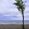 "Day Twenty-Four<br /> <br /> ""Great Lake Wind""<br /> <br /> Lake Ontario at Lakeside Park<br /> Port Dalhousie, Ontario"