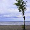 "Day Twenty-Four<br /> <br /> ""Great Lake Wind""<br /> <br /> Lake Ontario at Lakeside Park<br /> Port Dalhousie, Ontario"