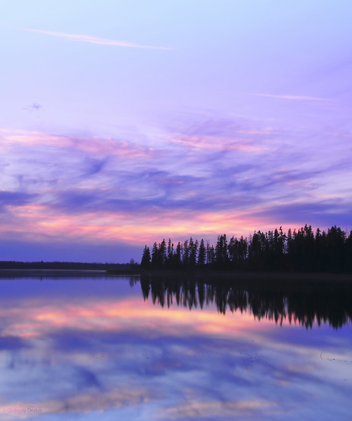 "January 14, 2011<br /> <br /> ""Pastel Sunset""<br /> <br /> Astotin Lake<br /> Elk Island National Park, Alberta"