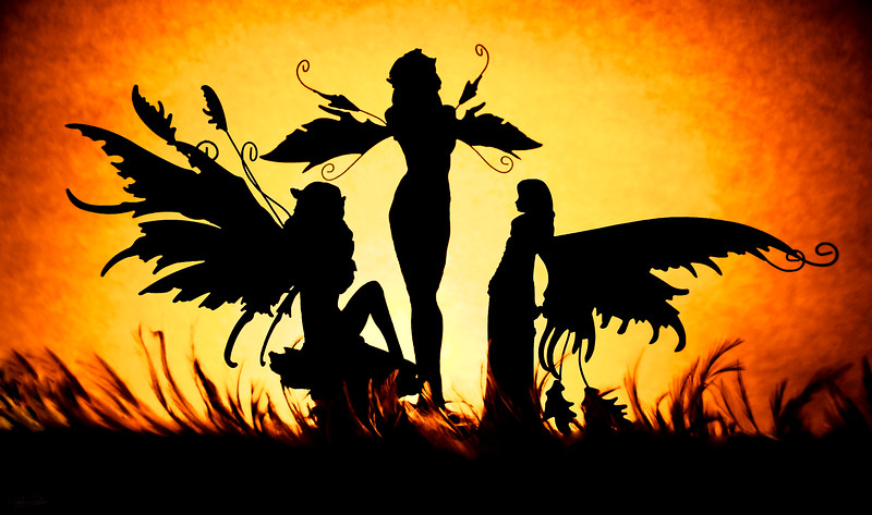 November 23, 2012<br /> <br /> Night Fairies<br /> <br /> * This is one of the images I entered in our camera club competition, Things with Wings.