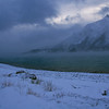 "Day Twenty-Two<br /> <br /> ""C-c-c-c-c-c-c-c-COLD""<br /> <br /> Abraham Lake<br /> Near Nordegg, Alberta"