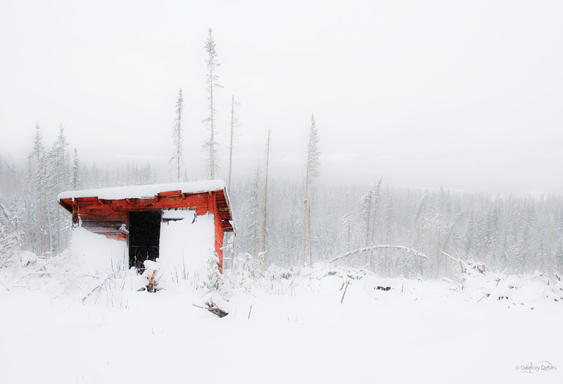 "February 6, 2011<br /> <br /> ""Mountain Shack""<br /> <br /> Nordegg, Alberta"