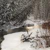 "Day Thirty-One<br /> <br /> ""Winter Wonder""<br /> <br /> Shunda Creek<br /> Near Nordegg, Alberta"