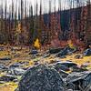 Fire in Fall