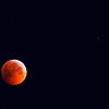 "Day Fifty-One<br /> <br /> ""Winter Solstice Lunar Eclipse""<br /> <br /> 1:53 am MST<br /> Edmonton, Alberta"